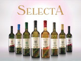 Prodaja grožđa – Vinarija SelectA